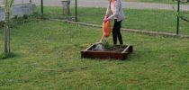 Zelo pogrešam vrtnarjenje…